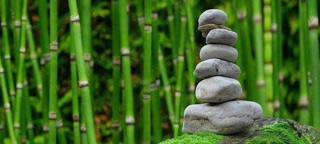 raise your vibration using gratitude
